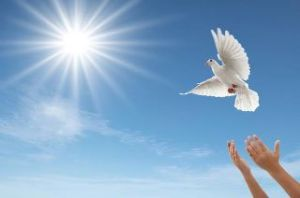 Der Heilige Geist ist das besgehüteste Geheimnis der Kirche