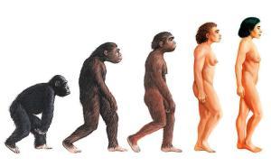 Gott gab der Evolution die Ziele